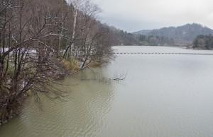 治水用のダムが建設されたわけだから、下流では水害が減少していなければならないのだが…