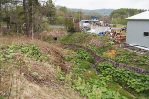 国道237号線の下を通過するボックスカルバートはそのままである。間口が狭いということは、さほど水が出ない川だった証でもある。牧草地から水が流れ出したとしても、大きな影響が無いという証拠でもある。
