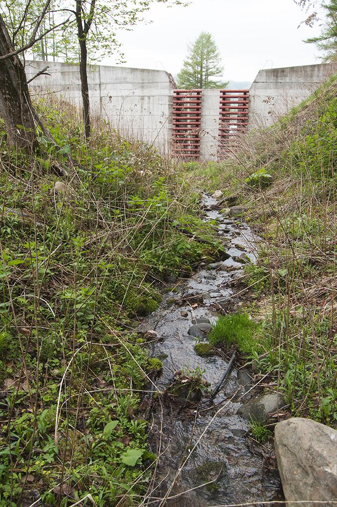 ごくごく小さな川にそぐわないような巨大な砂防ダムが建設された。