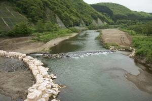 2014-05-23・厚沢部川・松園橋・上手の帯工?・DSC_0039