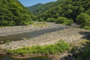 上流へ向かって溜まり続ける砂利で、V字の渓谷だったところが川幅が広がって平らになっている。2014年6月25日。