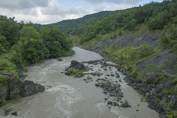 2014-08-11・加工済・鵡川(ニセパオマナイ川との合流点)・DSC_0472