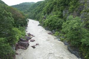 2014-08-11・加工済・鵡川(ニセパオマナイ川との合流点)・DSC_0486