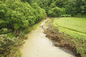 台風での大雨の後、濃い泥水が流れていた。