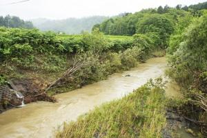 泥水が流れていた。