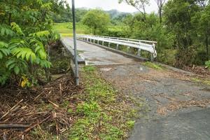 橋を乗り越える水位があり、左側の欄干は流されていた。