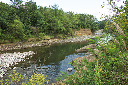 2014-09-05・加工済・豊平川・藻南公園下流側・DSC_0038