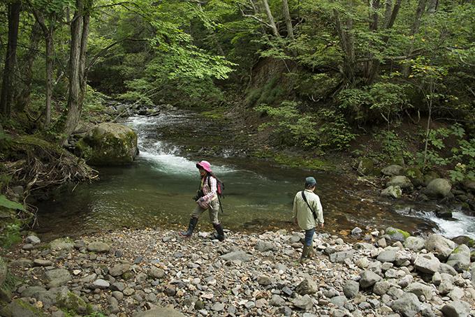 真駒内川の上流へ行った。