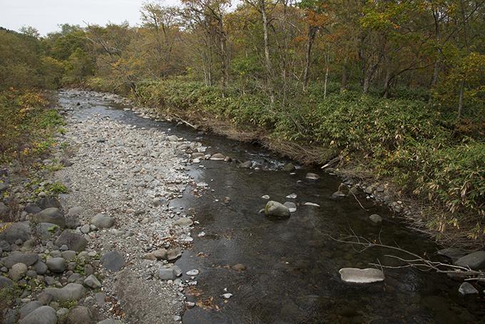 少し上流の橋から、下流を見た。川底が下がり、右側の岸辺は崩れている。また、巨石が少なく、微細な砂が目立つようになっている。