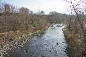 右手にはサケマスふ化場があり、護岸が整備された。川底にあった護床ブロックが水面から上に出ているのが分かる。河床が下がり続けている。