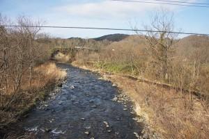 右の岸は陸地かしているが、もともと川底で、川底に敷き詰められた護床ブロックがその面影を残している。