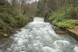 トムラウシ登山口。治山ダムが当然のように建設されている。