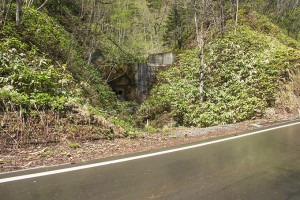 トムラウシ登山口に行く間にも、小沢にたくさんの治山ダムがあった。