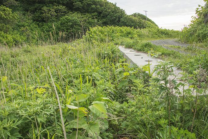 2015-06-07・加工済・良瑠石川・道路崩壊箇所はもう安全になった・KAZ_0442