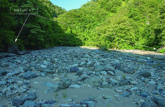 2015-07-06・臼別川・砂利で埋まった砂防ダム