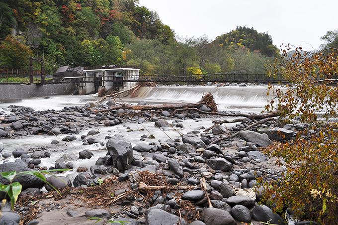 取水用のダムの直下の石を見ると、巨石はあまりなく、砂利は人頭大前後の粒ばかりになっている。