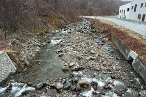 急峻な川なのに、巨石が少なく、小ぶりの石が目立つ。川底は下がり、左手の山の斜面がズリ落ちている。