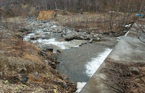 治山ダムの直下。巨石が少ないことが分かる。石の量も少なく、岩盤河床になっていくのだろう。