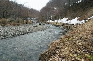 さらに上流に治山ダムがあり、その下流では右手の山の斜面がズリ落ちているのが分かる。こうして山の崩壊が大規模化していくことだろう。