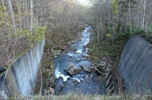 上流の農道の橋から下流を見た。川底が下がっているのが分かる。