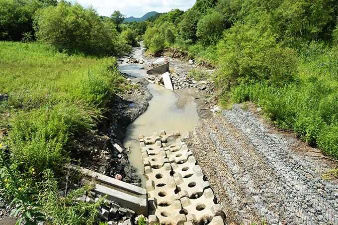 2003-08-12-C・加工済・沙流川水系アブシ川・ 167