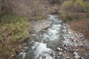 2015-04-21・加工済・見市川支流冷水川・KAZ_0266
