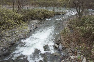 2015-04-21・加工済・見市川支流冷水川・KAZ_0270