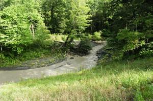 ニセパオマナイ川を流れるひどい泥水