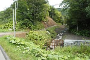 2009-08-31・加工済・ニセパオマナイ川支流の小沢383