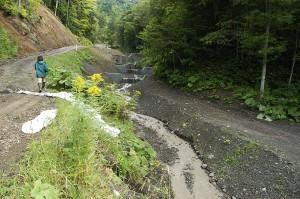 2009-08-31・加工済・ニセパオマナイ川支流の小沢386