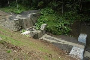 2009-08-31・加工済・ニセパオマナイ川支流の小沢395