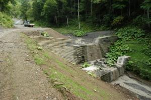 2009-08-31・加工済・ニセパオマナイ川支流の小沢397