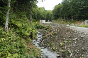 2009-08-31・加工済・ニセパオマナイ川支流1265林班沢川・169