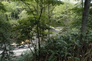 2009-08-31・加工済・ニセパオマナイ川支流1265林班沢川・220
