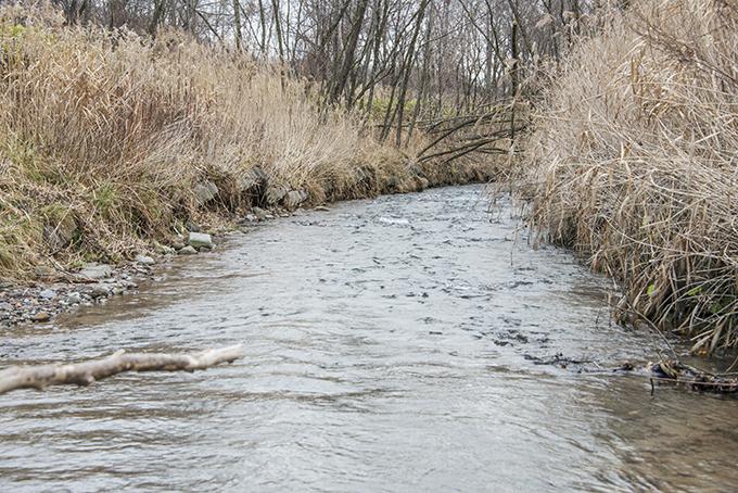 この落差工の下流側。川底が下がり、川岸が崩れている。2015年11月20日