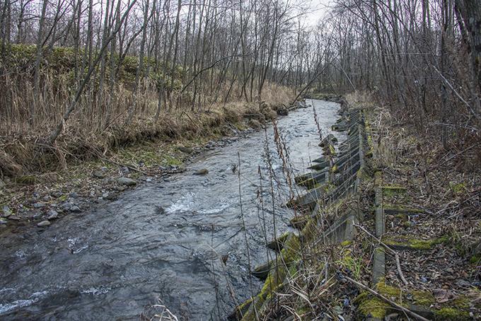 巨大スリットダムの下流では川底が下がり、川岸が崩れている。2015年11月20日