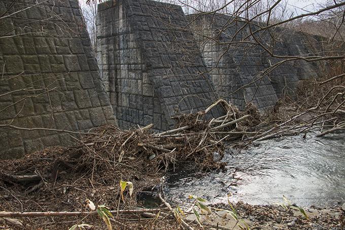 流木で塞がるのは垂直型スリット共通の現象。欠陥スリットだ。2015年11月20日