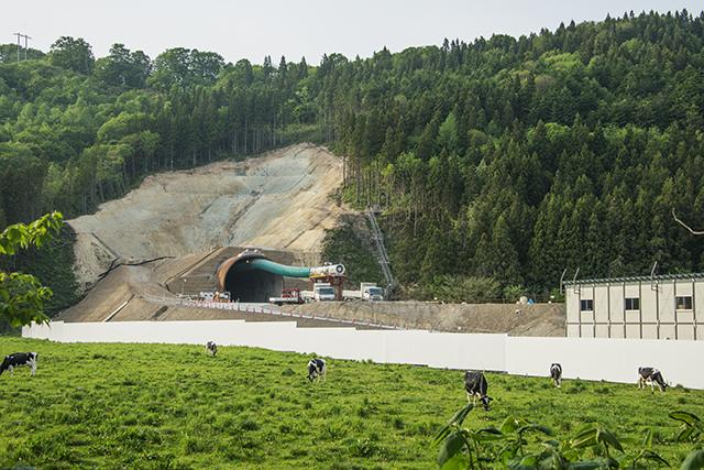 120mほど掘り進んだと言われる立岩トンネル。酪農の町、八雲町の顔でもある牧場を分断して建設が進められている。撮影:2016年05月23日