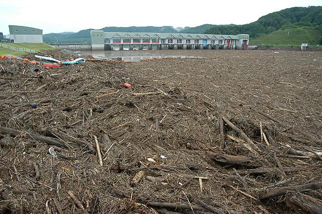 泥流と共に放流口に押し寄せた夥しい量の流木で、放水量が絞られ、二風谷ダムは決壊の危機に直面していたのだろう。これだけの流木が押し寄せれば、放流量を知ることも、ゲート操作も不能の状況にあったのだろう。撮影:2003年8月11日