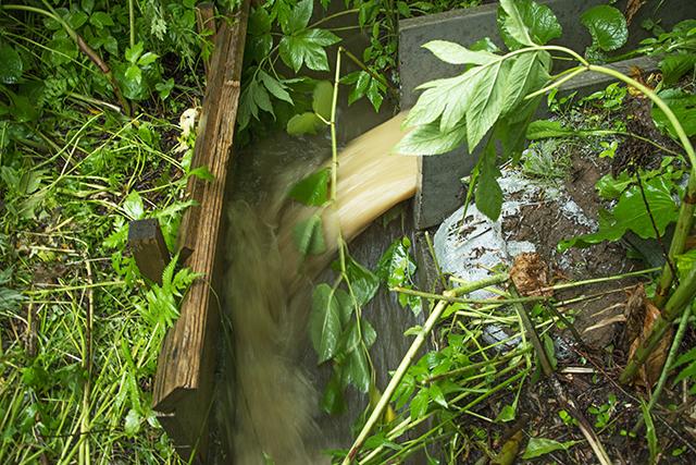 降雨時に何度も濃い濁り水が排水されていた 撮影:2016年7月2日
