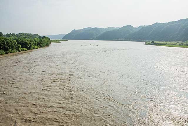 ほどんと泥で埋まった二風谷ダムの淡水域。ヤナギが繁茂しているのは浅くなっている証拠だ。巨大なダムなのに、あり得ない光景なのである。もはや、治水能力を失ったダムなのだ。