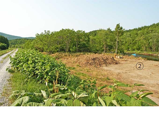 ②の破堤した堤防で行われた工事で、堤防と澪筋の間の河畔林が皆伐された。