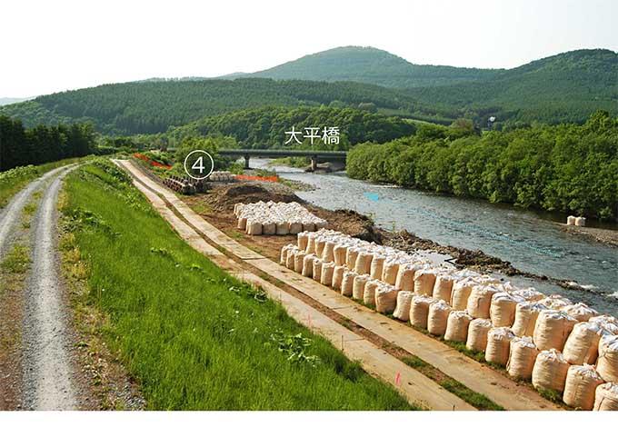 堤防と流路の間はすべて河畔林が伐り払われ、護岸工事が行われた。が、大平橋の河畔林は残されている。撮影:2007年6月12日。
